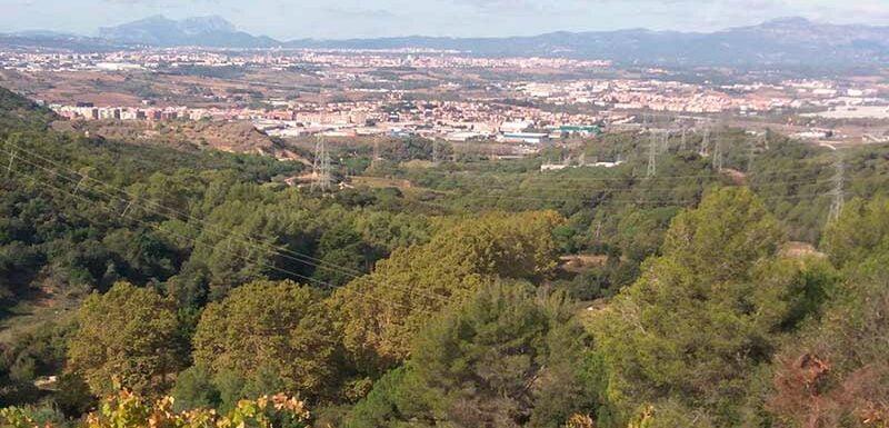 valles occidental vistas